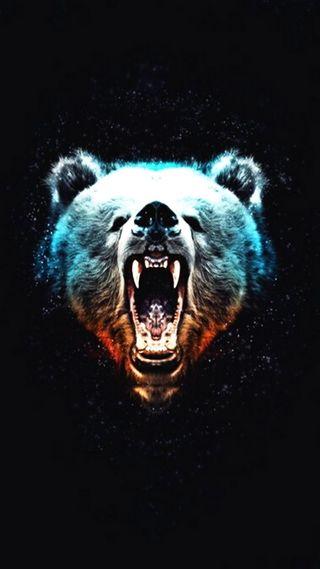 Обои на телефон рык, медведь, дикие, абстрактные