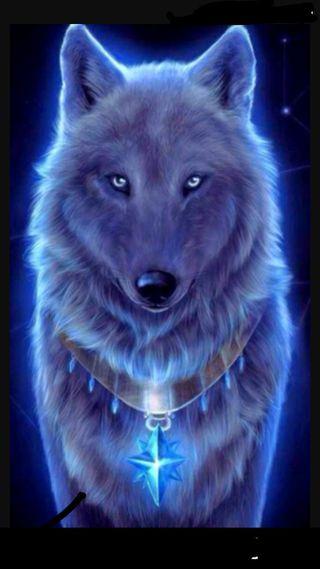 Обои на телефон лайк, синие, волк, radom, hey i like wolfs its, blue wolf