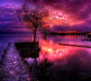 Обои на телефон удивительные, фиолетовые, закат