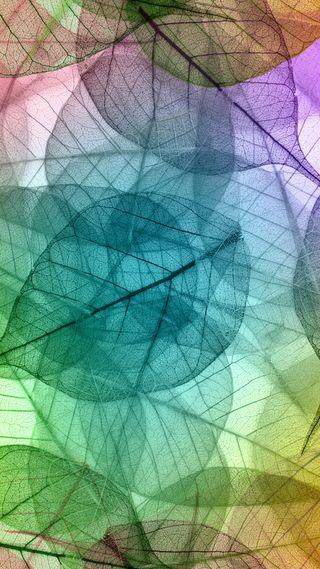 Обои на телефон макро, цветные, фон, листья, абстрактные