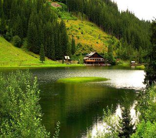 Обои на телефон взгляд, приятные, природа, прекрасные, пейзаж, милые, nature scenery