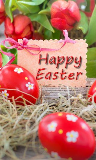 Обои на телефон празднование, яйца, цветы, тюльпаны, счастливые, пасхальные, красые, декор, eggs decor