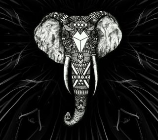 Обои на телефон art, черные, арт, слон