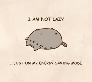 Обои на телефон энергетики, неко, ленивый, коты, i am not lazy