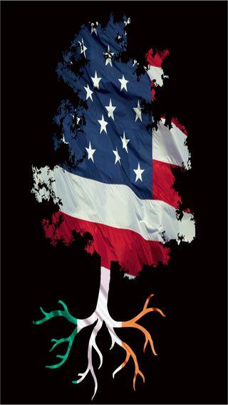 Обои на телефон ирландские, черные, флаг, сша, дерево, американские, usa, roots, irish heritage