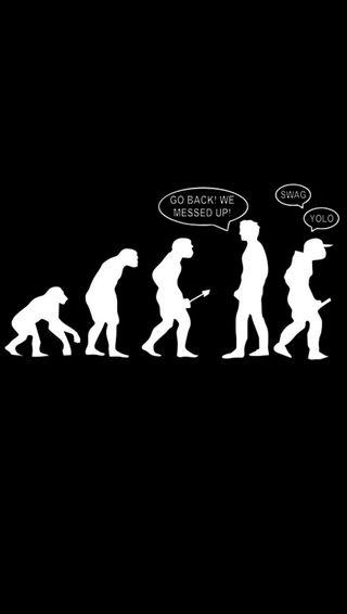 Обои на телефон эволюция, забавные, yolo, swag