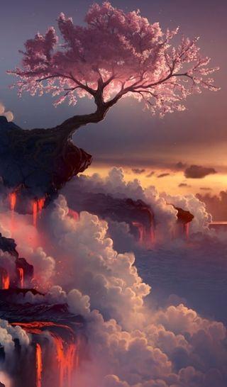 Обои на телефон вишня, небеса, жизнь, дерево, chery tree