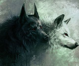 Обои на телефон волк, gss, dfhg