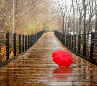 Обои на телефон любовь, классные, дождь, день, love
