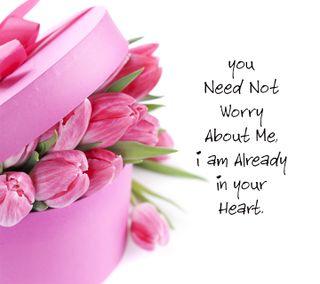 Обои на телефон сообщение, цветы, тюльпаны, романтика, любовь, высказывания, signskarmughil, love