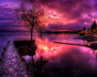 Обои на телефон удивительные, фиолетовые, отражение, закат, дерево
