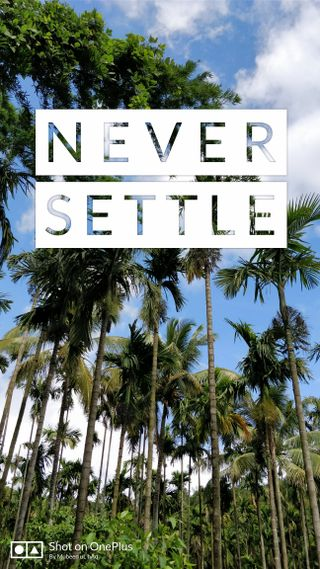 Обои на телефон решить, природа, никогда, oneplus, never settle nature, never settle