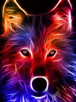 Обои на телефон животные, волк, абстрактные