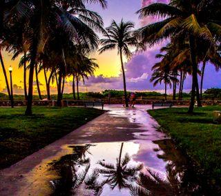 Обои на телефон тропические, остров