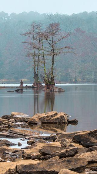 Обои на телефон озеро, прекрасные, пейзаж, деревья