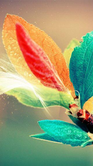 Обои на телефон цифровое, радуга, природа, листья, классные, арт, абстрактные, its awesome, hd, art