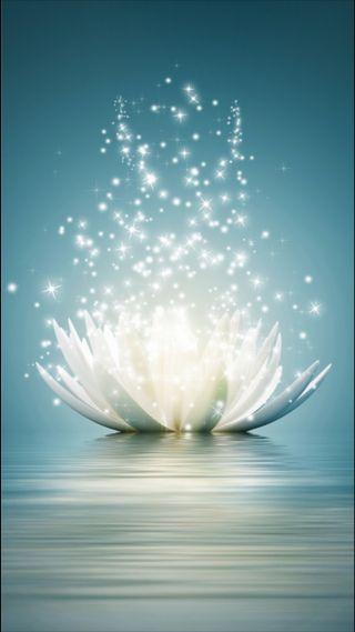 Обои на телефон лотус, цветы, фантазия, свет, огни, магия, magic lotus, hd