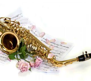 Обои на телефон лепестки, цитата, цветы, приятные, последние, новый, музыка, любовь, sensational saxophon, love, hd, 2013