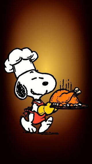 Обои на телефон еда, счастливые, собаки, кошки, загрузка, благодарение, thanksgiving food