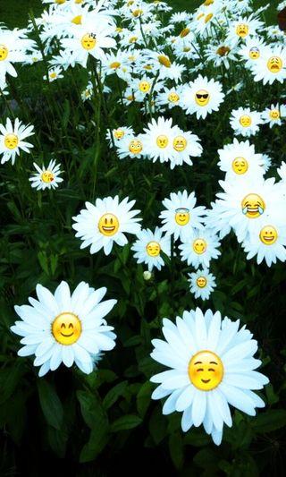 Обои на телефон эмоджи, цветы, смайлик, smileys