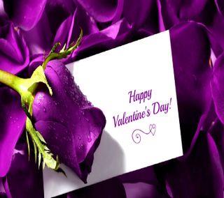 Обои на телефон сообщение, счастливые, романтика, розы, поговорка, любовь, день, валентинки, валентинка, love, happy valentines
