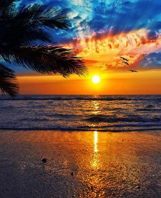 Обои на телефон солнце, пляж, закат, sunset beach, note