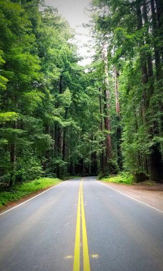 Обои на телефон открыто, чистые, природа, калифорния, дорога, open road