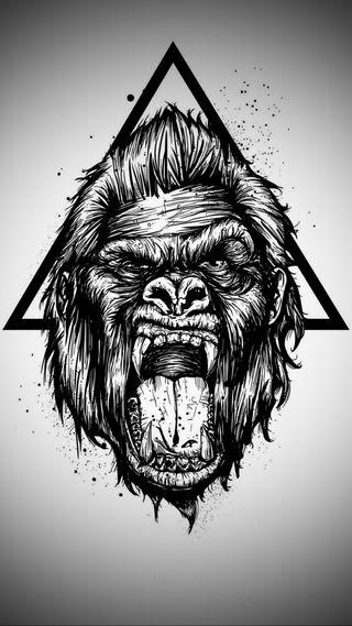 Обои на телефон обезьяны, горилла