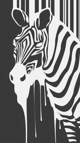 Обои на телефон рисунок, черные, зебра, животные, дизайн, белые