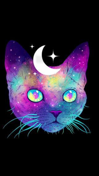 Обои на телефон кошки, космос