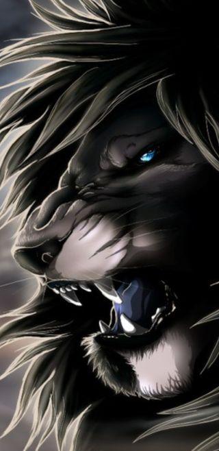 Обои на телефон лев, черные, синие, серые, природа, король, злые, животные, глаза, 4k