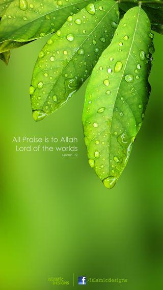 Обои на телефон каран, господин, бог, аллах, praise, creation, all praise to allah