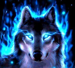Обои на телефон волк, wolf---------------, ---------------