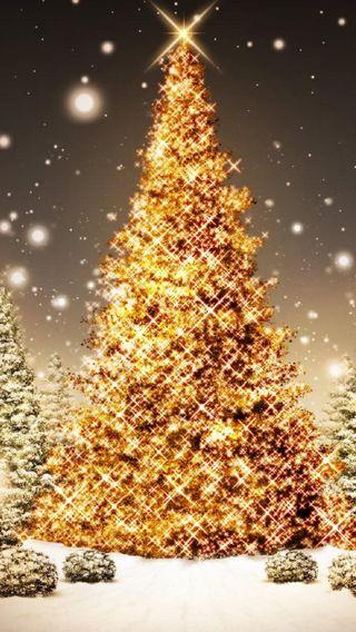 Обои на телефон счастливое, дерево, счастливые, рождество, новый, каникулы, happy
