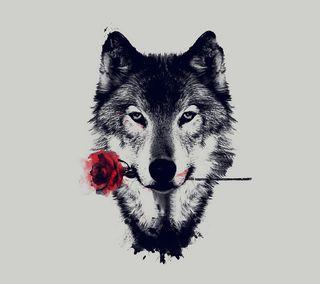 Обои на телефон рисунки, цветы, розы, волк