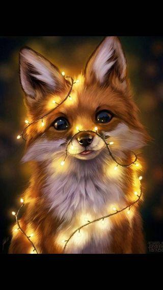 Обои на телефон мех, лиса, звезда, животные, foxes
