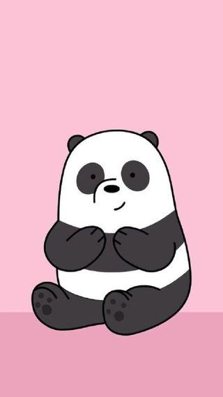 Обои на телефон медведь, панда, животные
