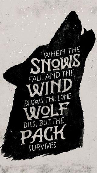 Обои на телефон престолы, игра, волк, game-of-thrones, game of thones wolf