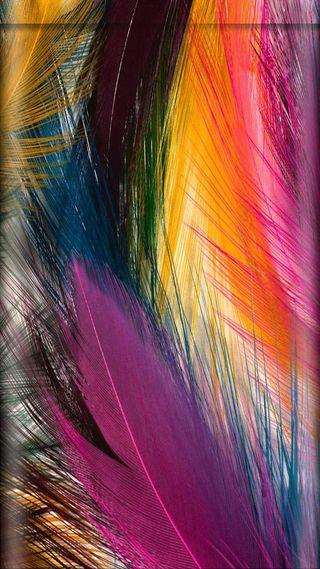 Обои на телефон перья, фон, перо, красочные, дизайн, абстрактные