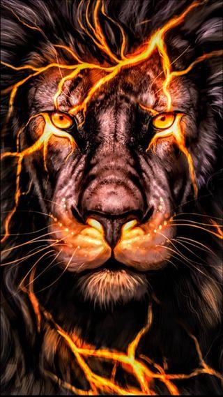Обои на телефон черные, тигр, оранжевые, лев, король, животные, белые, big