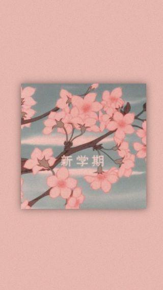 Обои на телефон вишня, цвести, сакура, лес, дерево, cherry tree, cherry blossom