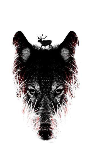 Обои на телефон волк, арт, wolf art