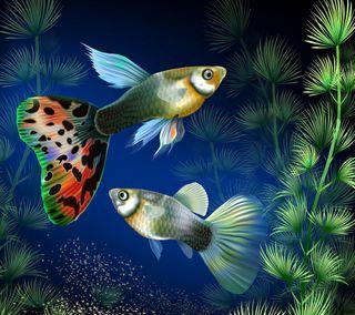 Обои на телефон рыба, рисунки, приятные, подводные, море, красочные, аквариум