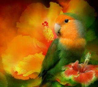 Обои на телефон попугай, цветы, птицы, природа