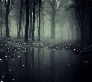 Обои на телефон лес, темные, самсунг, природа, галактика, samsung galaxy s5, galaxy s4