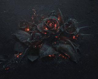 Обои на телефон готические, цветы, розы, огонь