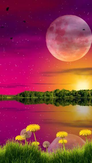 Обои на телефон отражение, цветы, сияние, природа, луна