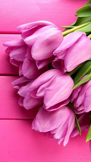 Обои на телефон цветы, розовые