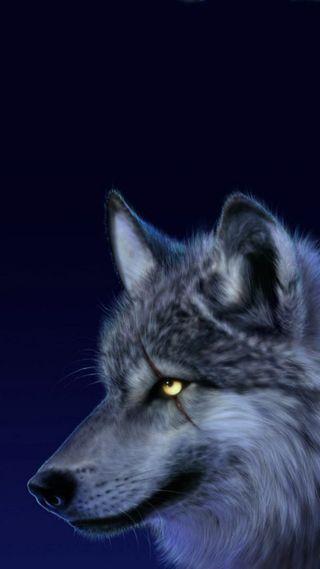 Обои на телефон животные, волк, scar