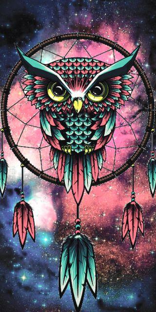 Обои на телефон art, арт, мечта, сова, перья, ловец